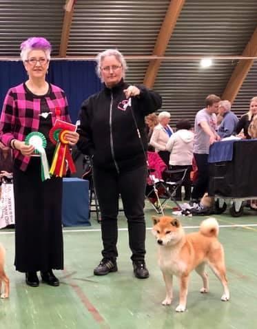 Yuuwa ble ny Norsk champion 27/4-2019