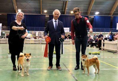 Påskeshow, Klubben for gårds og fjellhunder, Fuku BIR og Judy BIM